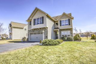 14 Meadow Drive, Ephrata, PA 17522 (MLS #262636) :: The Craig Hartranft Team, Berkshire Hathaway Homesale Realty