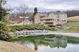 5751 Mt Pisgah Road, York, PA 17406 (MLS #232863) :: The Craig Hartranft Team, Berkshire Hathaway Homesale Realty