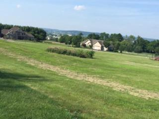 0 CO Cardinal Court #10, East Earl, PA 17519 (MLS #106590) :: The Craig Hartranft Team, Berkshire Hathaway Homesale Realty