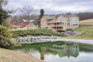 5751 Mt Pisgah Road, York, PA 17406 (MLS #231086) :: The Craig Hartranft Team, Berkshire Hathaway Homesale Realty
