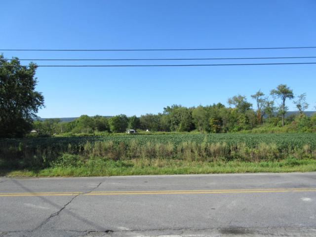 0 Old Route 22, Bethel, PA 19507 (MLS #241296) :: The Craig Hartranft Team, Berkshire Hathaway Homesale Realty