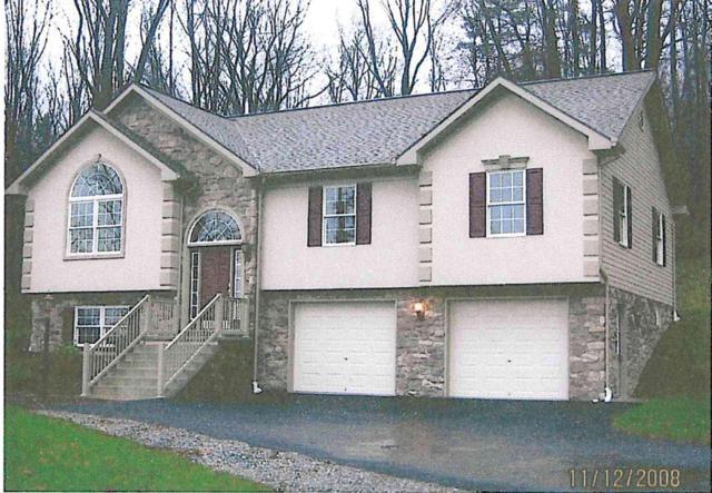 485 Pleasant View Road, Hummelstown, PA 17036 (MLS #243455) :: The Craig Hartranft Team, Berkshire Hathaway Homesale Realty