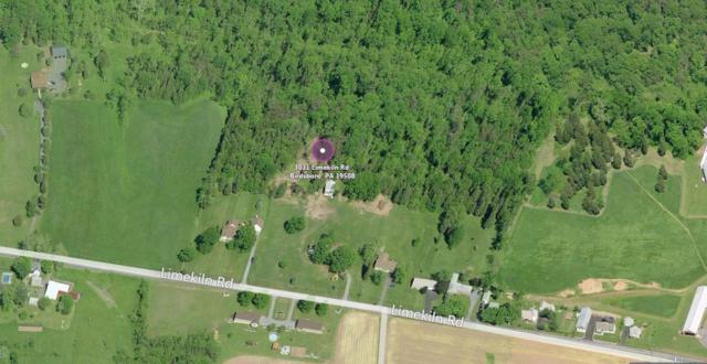 3011 Limekiln Road, Birdsboro, PA 19508 (MLS #247682) :: The Craig Hartranft Team, Berkshire Hathaway Homesale Realty