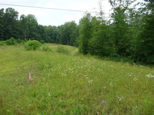 LOT 20 A Stanley Drive, Palmyra, PA 17078 (MLS #256482) :: The Craig Hartranft Team, Berkshire Hathaway Homesale Realty