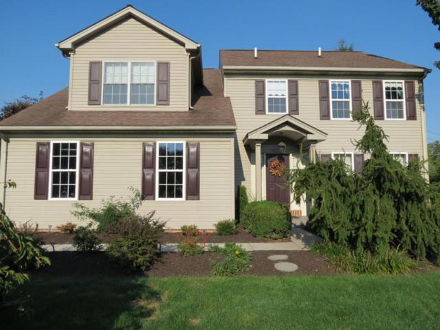 991 Overlook Drive, Hummelstown, PA 17036 (MLS #256628) :: The Craig Hartranft Team, Berkshire Hathaway Homesale Realty