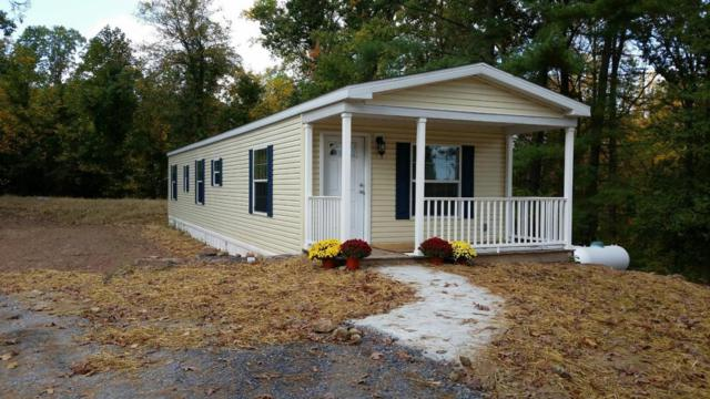 220 Schlouch Road #2967, Mohnton, PA 19540 (MLS #261095) :: The Craig Hartranft Team, Berkshire Hathaway Homesale Realty