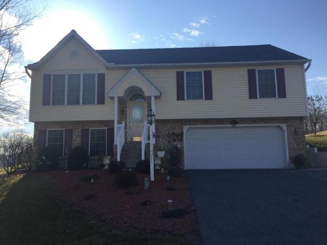 401 Rabbit Hill Lane, Lancaster, PA 17603 (MLS #261523) :: The Craig Hartranft Team, Berkshire Hathaway Homesale Realty