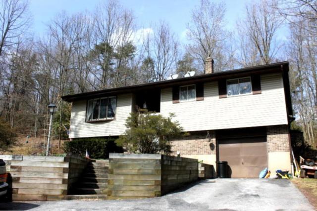371 Hanna Kurtz Road, Birdsboro, PA 19508 (MLS #263262) :: The Craig Hartranft Team, Berkshire Hathaway Homesale Realty