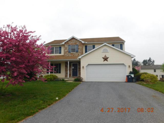 13 Dragonfly Court, Myerstown, PA 17067 (MLS #264139) :: The Craig Hartranft Team, Berkshire Hathaway Homesale Realty