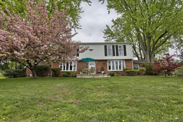 265 Alwine, Middletown, PA 17057 (MLS #264144) :: The Craig Hartranft Team, Berkshire Hathaway Homesale Realty