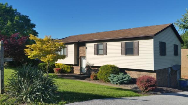 1501 Randow Road, York, PA 17403 (MLS #265044) :: The Craig Hartranft Team, Berkshire Hathaway Homesale Realty