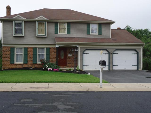 23 Blackberry Lane, Ephrata, PA 17522 (MLS #265508) :: The Craig Hartranft Team, Berkshire Hathaway Homesale Realty