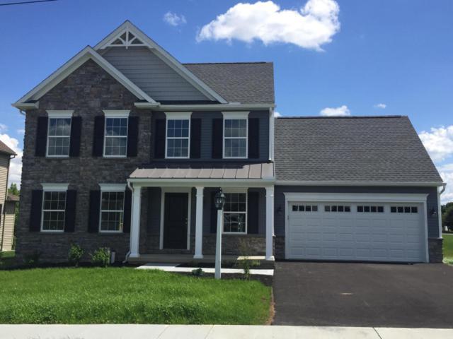 75 Clay School Road, Ephrata, PA 17522 (MLS #265991) :: The Craig Hartranft Team, Berkshire Hathaway Homesale Realty