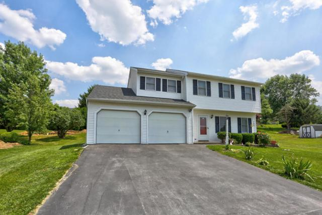 1708 White Water Road, Lancaster, PA 17603 (MLS #266281) :: The Craig Hartranft Team, Berkshire Hathaway Homesale Realty