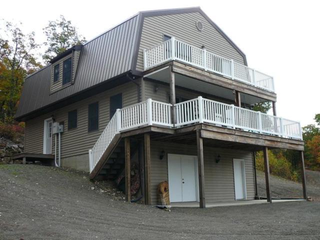 377 Black Bear Lane, Other, PA 99999 (MLS #266489) :: The Craig Hartranft Team, Berkshire Hathaway Homesale Realty