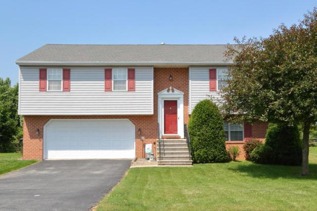 405 Appaloosa Way, Red Lion, PA 17356 (MLS #266512) :: The Craig Hartranft Team, Berkshire Hathaway Homesale Realty