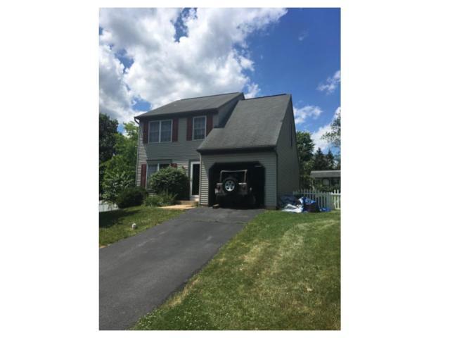 45 Village Spring Lane, Reinholds, PA 17569 (MLS #266614) :: The Craig Hartranft Team, Berkshire Hathaway Homesale Realty