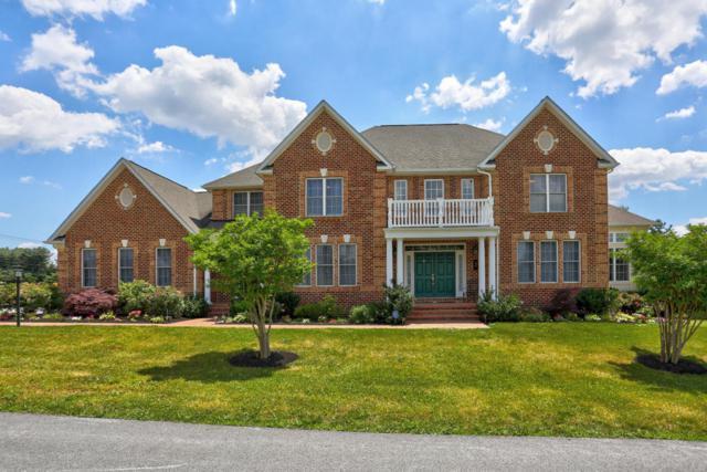 3 Ivanhoe Lane, Wrightsville, PA 17368 (MLS #266706) :: The Craig Hartranft Team, Berkshire Hathaway Homesale Realty