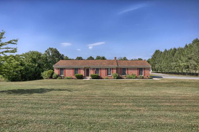 95 Stone Mill Drive, Hummelstown, PA 17036 (MLS #266770) :: The Craig Hartranft Team, Berkshire Hathaway Homesale Realty