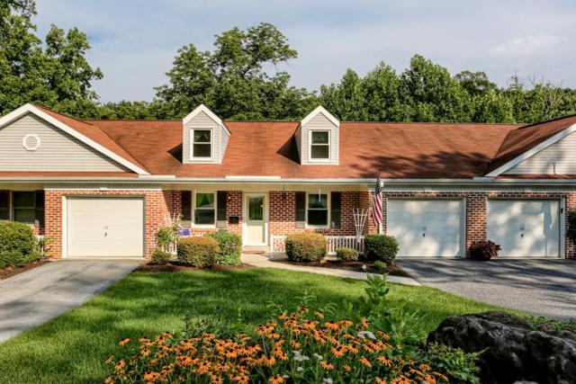 73 Whitetail Drive, Elizabethtown, PA 17022 (MLS #267880) :: The Craig Hartranft Team, Berkshire Hathaway Homesale Realty