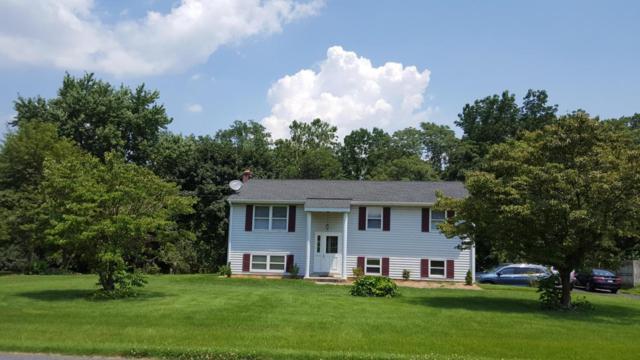 219 Reifsnyder Road, Lititz, PA 17543 (MLS #267956) :: The Craig Hartranft Team, Berkshire Hathaway Homesale Realty