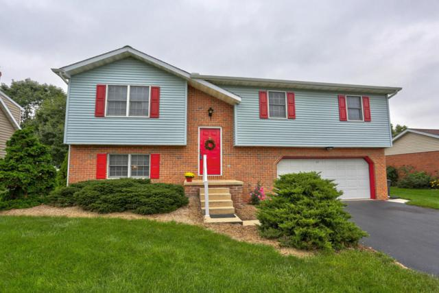 222 Stephen Lane, Ephrata, PA 17522 (MLS #270349) :: The Craig Hartranft Team, Berkshire Hathaway Homesale Realty