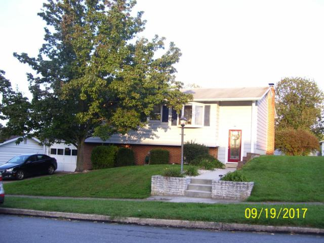 112 Nissley Drive, Middletown, PA 17057 (MLS #270529) :: The Craig Hartranft Team, Berkshire Hathaway Homesale Realty