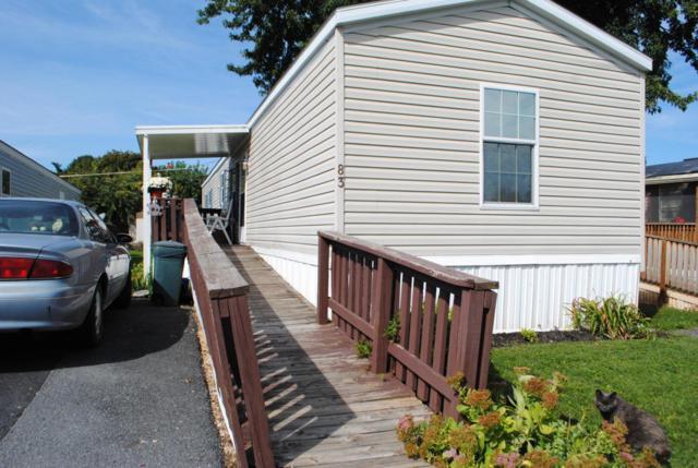 83 Willow Drive, Ephrata, PA 17522 (MLS #270530) :: The Craig Hartranft Team, Berkshire Hathaway Homesale Realty