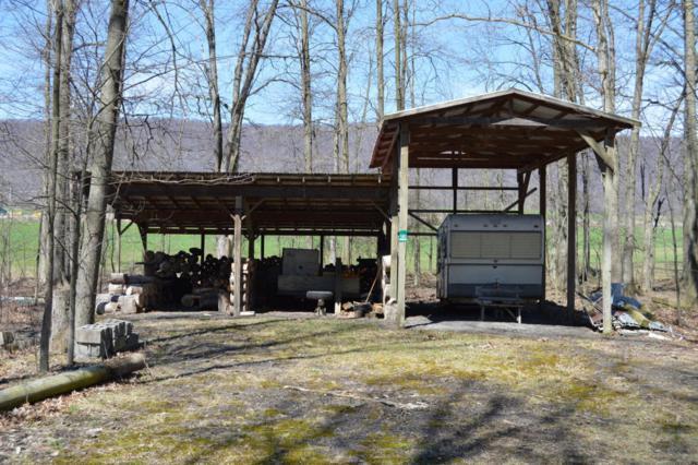 180 Wolfgang Lane, New Germantown, PA 17006 (MLS #270578) :: The Craig Hartranft Team, Berkshire Hathaway Homesale Realty