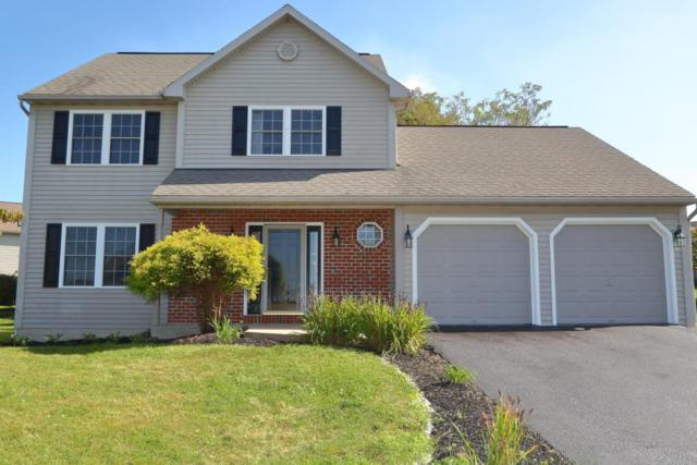 1015 Meadow Drive, Reading, PA 19605 (MLS #270747) :: The Craig Hartranft Team, Berkshire Hathaway Homesale Realty