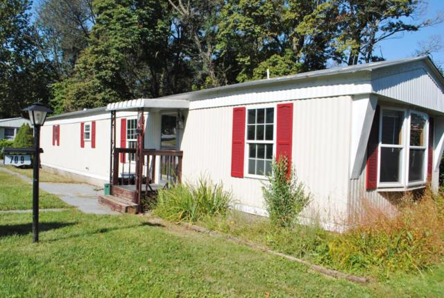 709 Primrose Lane, Ephrata, PA 17522 (MLS #270963) :: The Craig Hartranft Team, Berkshire Hathaway Homesale Realty
