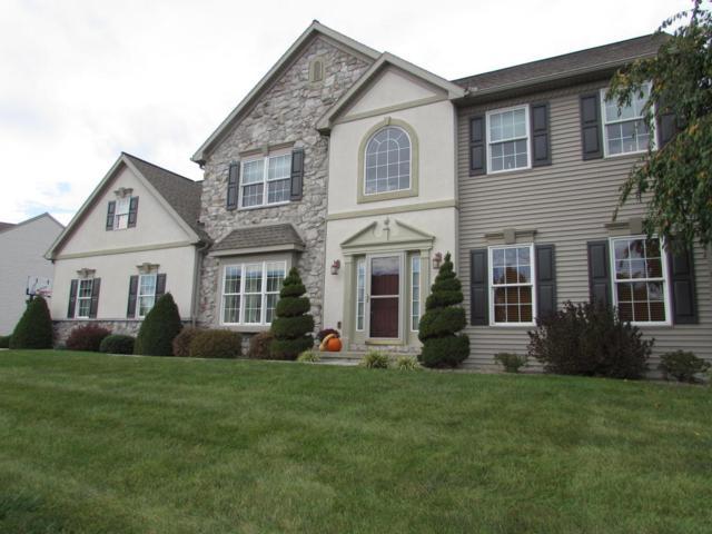 41 Meadow Drive, Ephrata, PA 17522 (MLS #271204) :: The Craig Hartranft Team, Berkshire Hathaway Homesale Realty