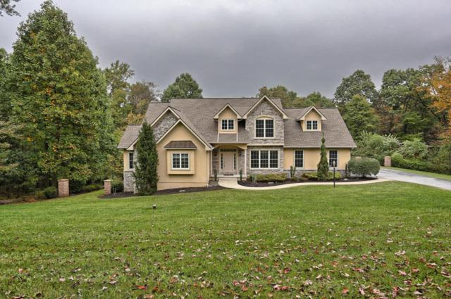 208 Iron Valley Drive, Lebanon, PA 17042 (MLS #271252) :: The Craig Hartranft Team, Berkshire Hathaway Homesale Realty