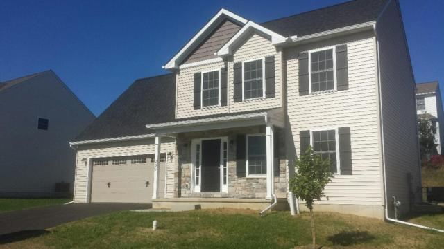 230 Loghes Drive #191, Manheim, PA 17545 (MLS #271445) :: The Craig Hartranft Team, Berkshire Hathaway Homesale Realty