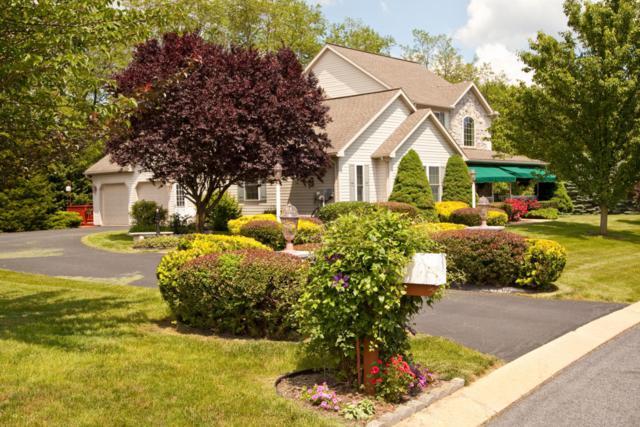 20 Bridle Path Way, Stevens, PA 17578 (MLS #265619) :: The Craig Hartranft Team, Berkshire Hathaway Homesale Realty