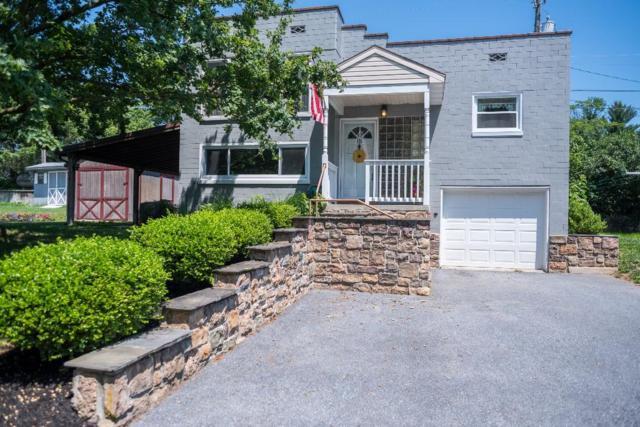 116 Sunny Slope Lane, Manheim, PA 17545 (MLS #266119) :: The Craig Hartranft Team, Berkshire Hathaway Homesale Realty