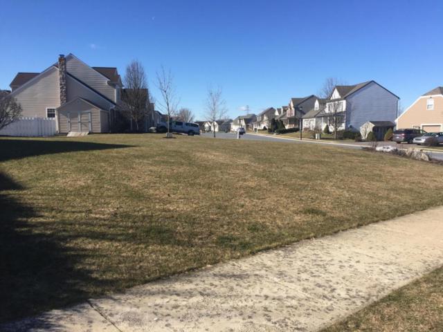 51 Reagan Drive, Ephrata, PA 17522 (MLS #246552) :: The Craig Hartranft Team, Berkshire Hathaway Homesale Realty