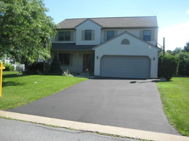 11 Ladybug Lane, Myerstown, PA 17067 (MLS #266303) :: The Craig Hartranft Team, Berkshire Hathaway Homesale Realty