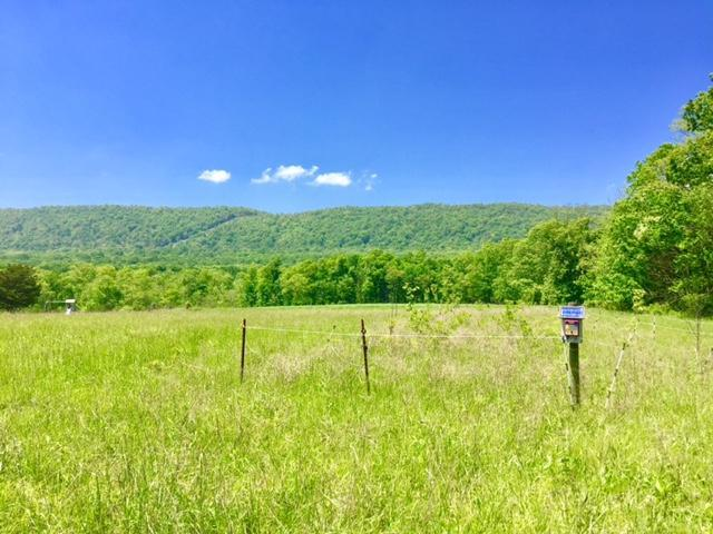 00 Scattered Acres Road, Mifflin, PA 17058 (MLS #265373) :: The Craig Hartranft Team, Berkshire Hathaway Homesale Realty