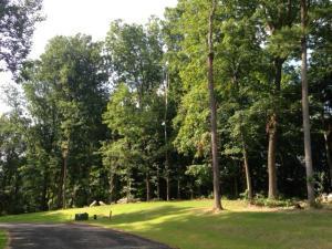 4 Alans Green #119, Lancaster, PA 17602 (MLS #269254) :: The Craig Hartranft Team, Berkshire Hathaway Homesale Realty