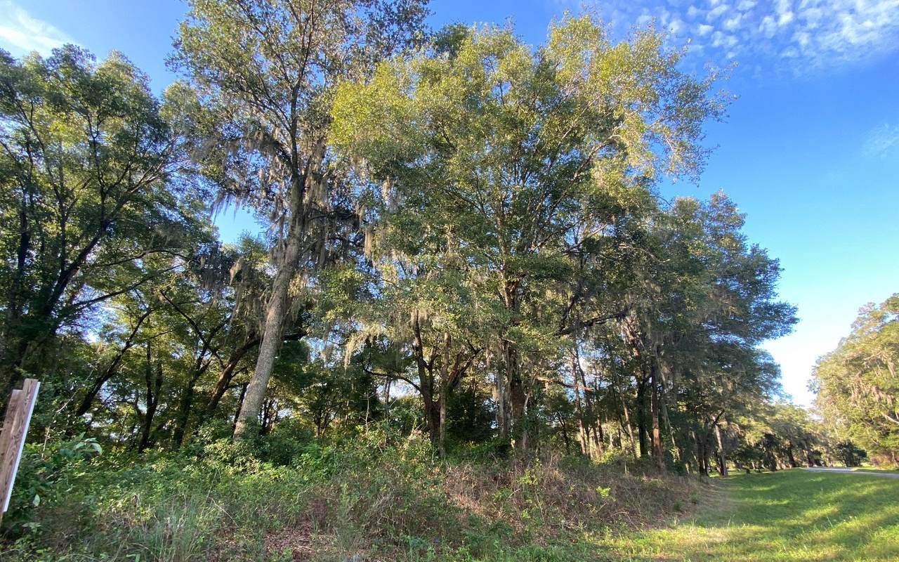 TBD Indian Springs Drive - Photo 1