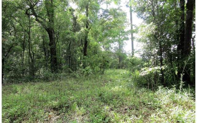 LOT49 165TH DRIVE, OBrien, FL 32060 (MLS #104650) :: Better Homes & Gardens Real Estate Thomas Group