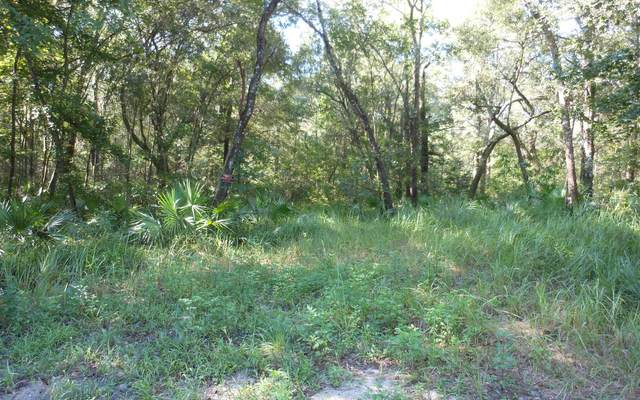 LOT19 NW Polk Path, Mayo, FL 32066 (MLS #105382) :: Better Homes & Gardens Real Estate Thomas Group