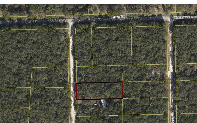 NE Beverly Hills Dr, Mayo, FL 32066 (MLS #106192) :: Better Homes & Gardens Real Estate Thomas Group