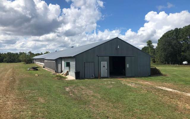 159 Union Grove Cemetery, Other, FL 32177 (MLS #106207) :: Better Homes & Gardens Real Estate Thomas Group