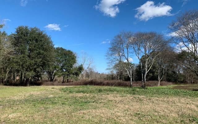 213 SW Sedgefield Farms Gln, Fort White, FL 32038 (MLS #106508) :: Better Homes & Gardens Real Estate Thomas Group