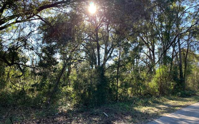 TBD SW Wilson Springs Rd, Fort White, FL 32038 (MLS #106813) :: Better Homes & Gardens Real Estate Thomas Group