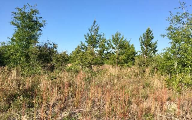 000 NE Liquorice Way, Lee, FL 32059 (MLS #107678) :: Better Homes & Gardens Real Estate Thomas Group