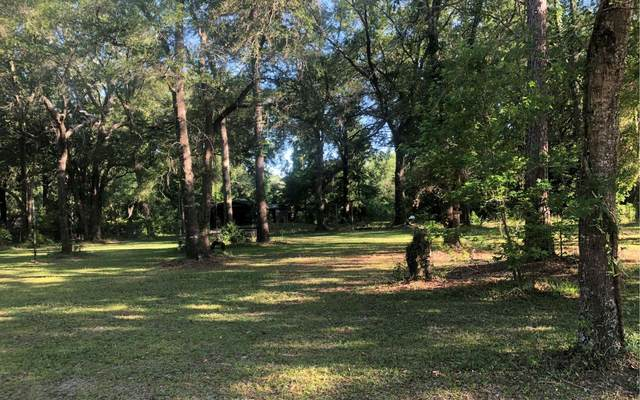 274 NW Michelle Pl, Lake City, FL 32055 (MLS #107722) :: Better Homes & Gardens Real Estate Thomas Group