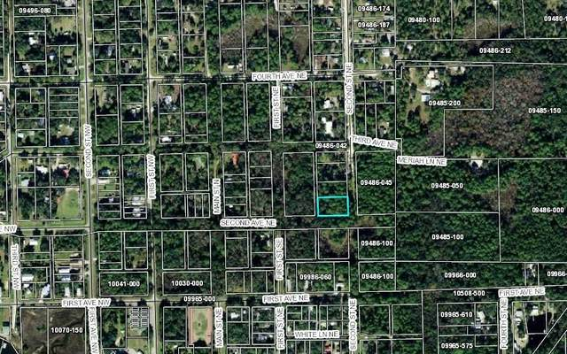 TBD NE 2ND ST, Steinhatchee, FL 32359 (MLS #107757) :: Better Homes & Gardens Real Estate Thomas Group